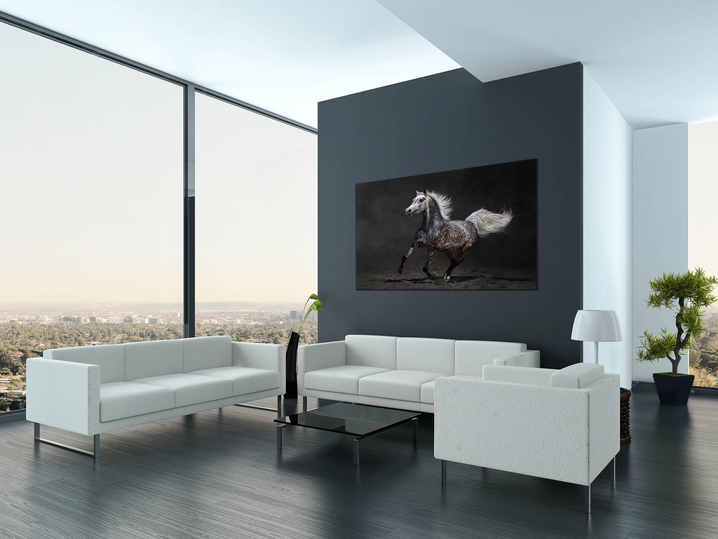 Art-Prints Pferdefotografie